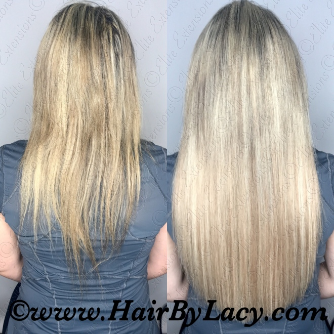 Longhair Blogs Pictures And More On Wordpress